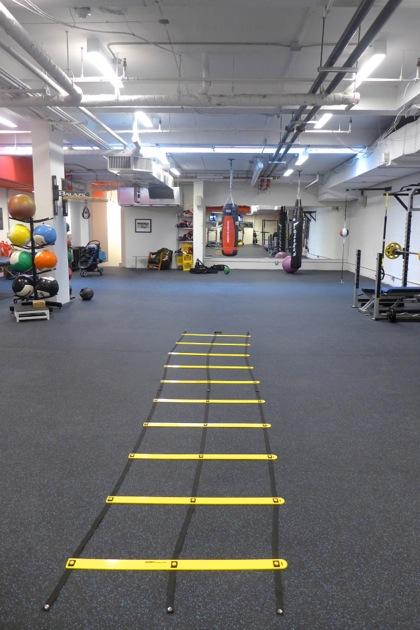 Live Well Company agility course