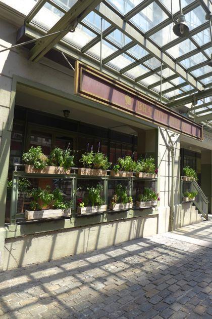 Brandy Library plants