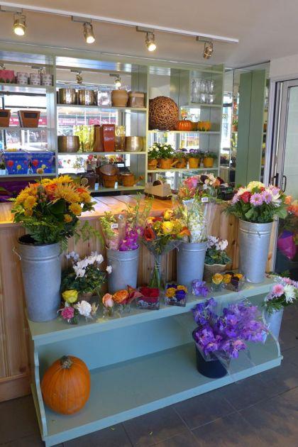 Dutch Petals counter