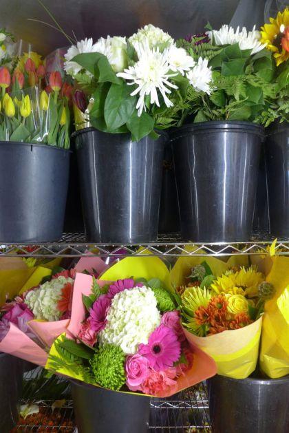 Dutch Petals flowers