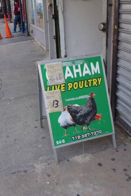 Bushwick live poultry