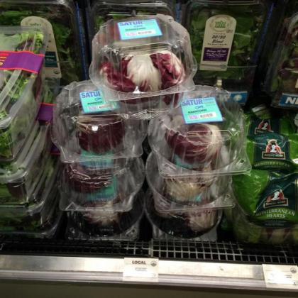 Satur Farms radicchio at Whole Foods
