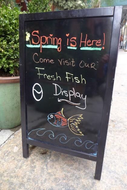Thalassa fresh fish display