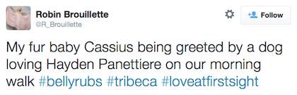 tweet Hayden Panettiere