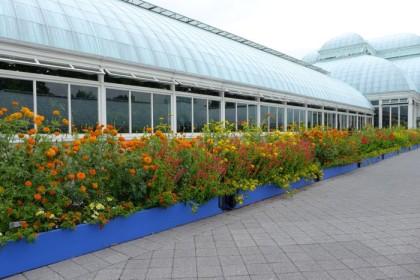 New York Botanical Garden Kahlo border