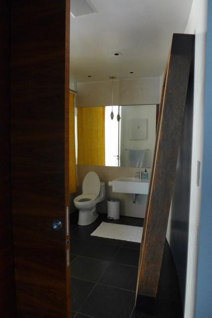 Loft Peeping Duane Penthouse guest bath