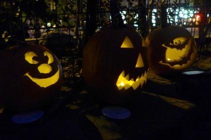 Washington Market Park pumpkins