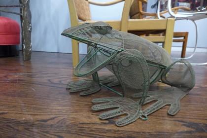 garden frog at Steven Sclaroff