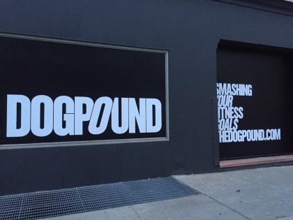 DogPound gym