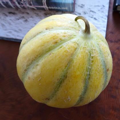 Le District melon