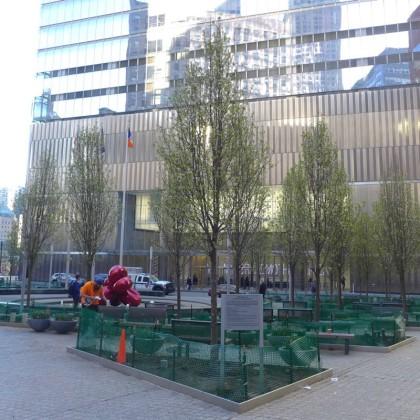 7 World Trade Center plaza trees