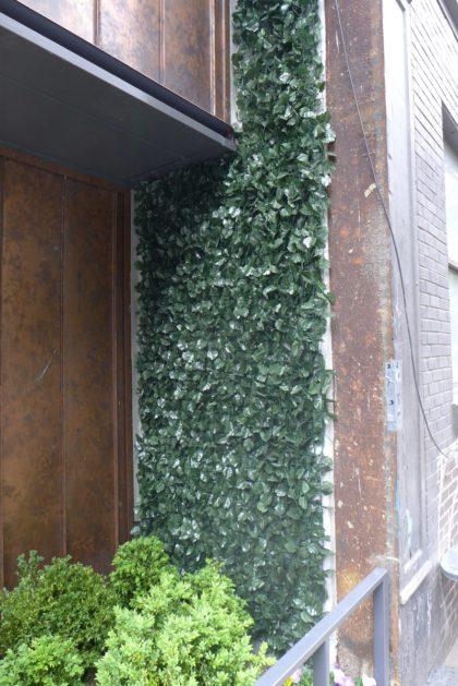 15 Renwick fake ivy