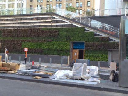 Liberty Park green wall
